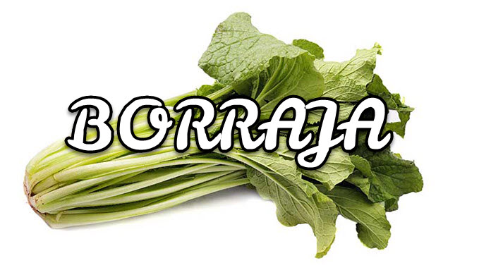 Borraja