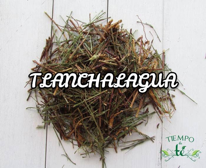 Tlanchalagua