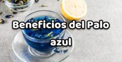 Beneficios del Palo azul