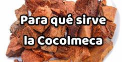 Para qué sirve la Cocolmeca